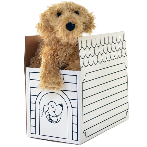 Caramel Labradoodle + Dog House Shipping Box