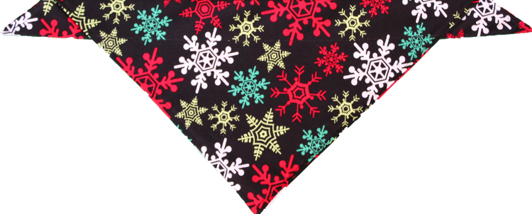 Christmas Party Bandana