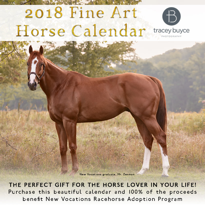 2018 Fine Art Horse Calendar by Tracey Buyce Photography