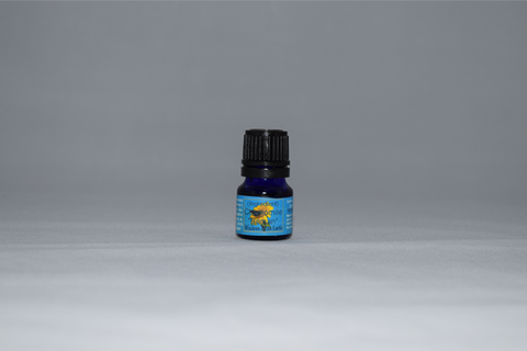 Chamomile German Blue from Egypt (15ml)|Manzanilla Alemana Azul de Egipcia (15ml)