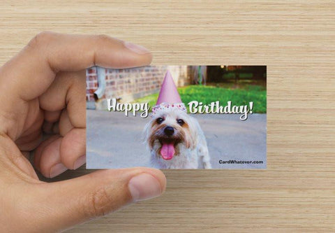 CardWhatever.com - Happy Birthday MINI-cards