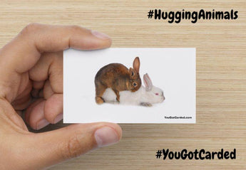 "YouGotCarded.com: WTF?! ""Hugging Animals"" ;)"