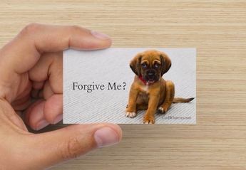 Forgive Me? - Puppy