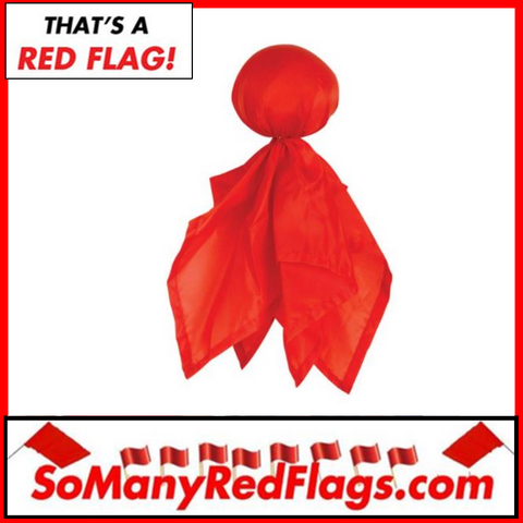 Red CHALLENGE FLAG (football) - SoManyRedFlags.com