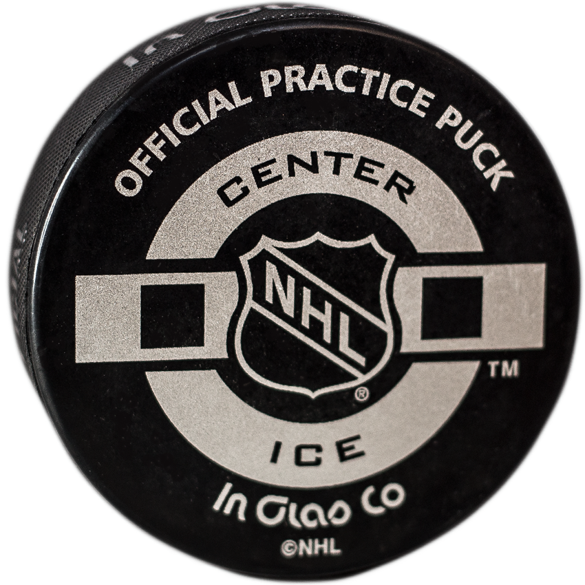 NHL Official Practice Puck Detroit Red Wings
