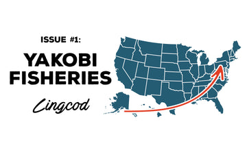 Where Does The Fish You Eat Come From? Issue #1 Yakobi Fisheries Lingcod