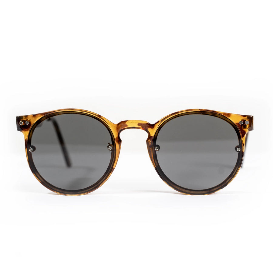 Spitfire Post Punk Sunglasses - Tortoise Shell/Black