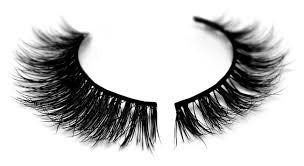 Strip Lash Application Only