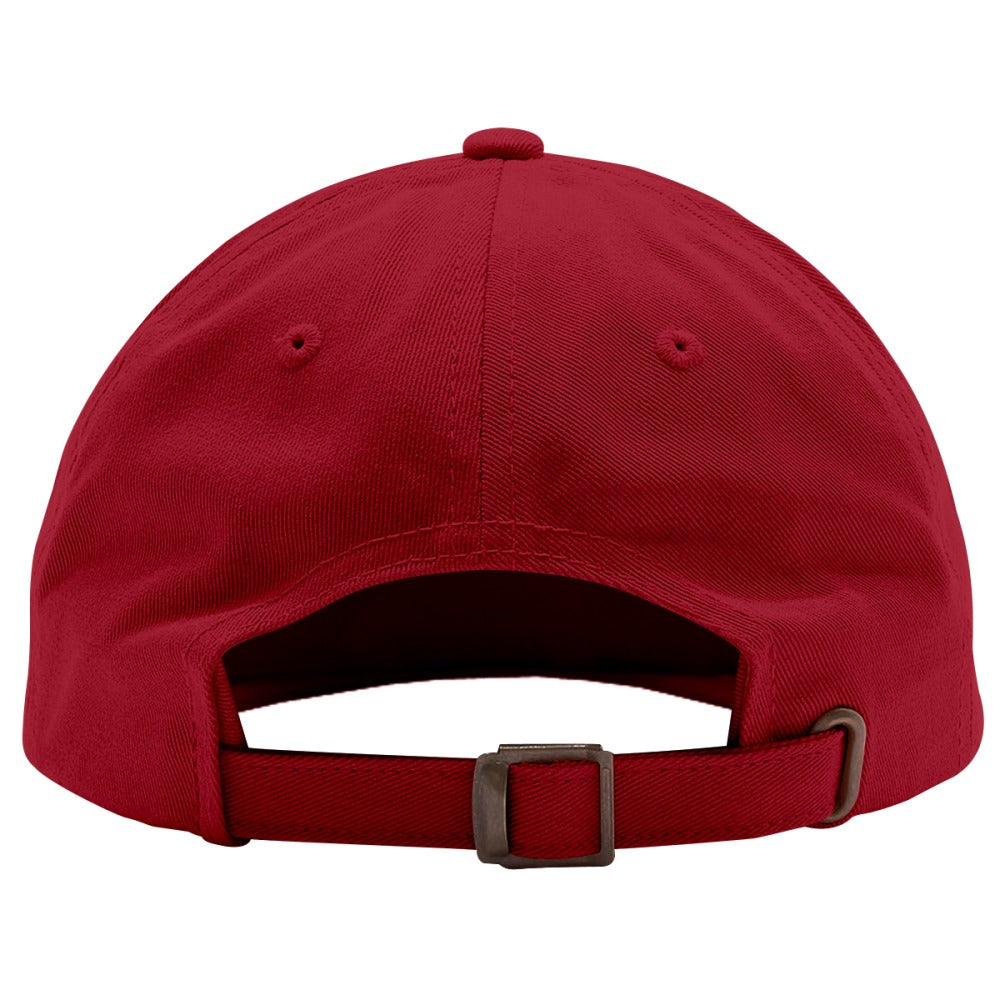 Anti-you Embroidered Cotton Twill Hat