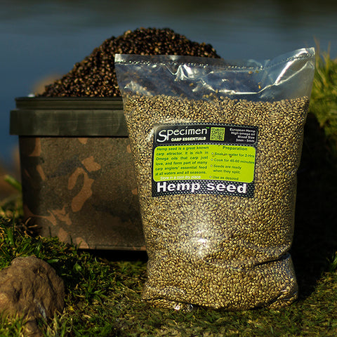 Hemp Seed is a great Carp bait
