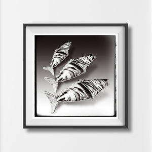 Vintage Murano Glass Fish retro fine art style kitsch fifties monochrome art print - 'Unframed'