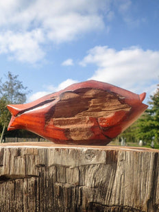vis drijfhout fish recycled wood