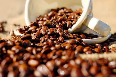 Yemen `Arabian Mocca' Coffee - My Shop Coffee