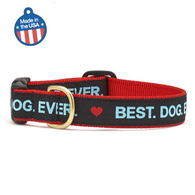 Best Dog Ever Dog Collar - Dimension Dream Seekers