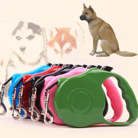 Retractable Dog Leash - Dimension Dream Seekers