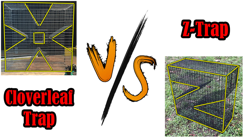 Perch Trap - Pinfish Trap Battle - Cloverleaf Vs Z-Trap!