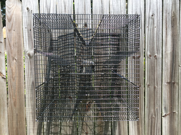 Pinfish Trap - Oversized Clover Bait Fish Trap