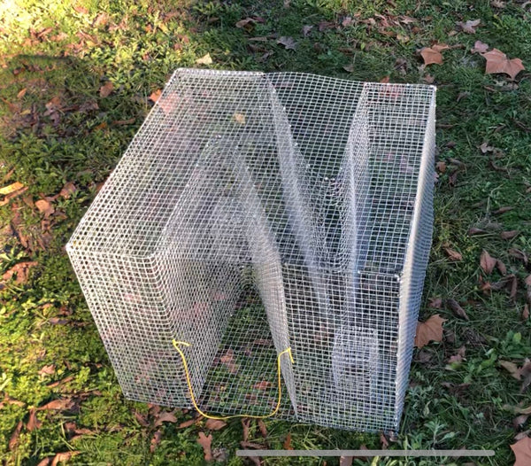 Z-Bait Fish Trap (OVERSIZED) - 18 inch Version
