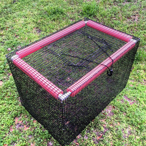 Reel texas outdoors home of the best catching perch trap for Live fish basket
