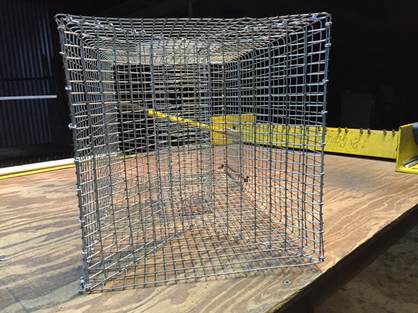 Multi-Purpose Trap - (Bait Fish and Crawfish Trap)
