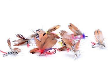Fishing Flies:Fishing Flies:Fire Sale