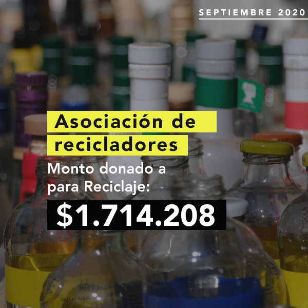 Recicladores de base chile