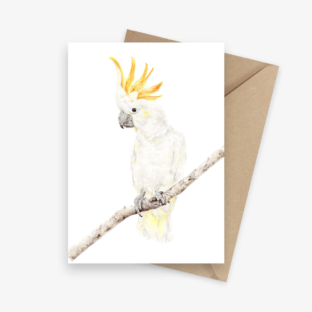 Greeting card featuring an Australian yellow-crested cockatoo.