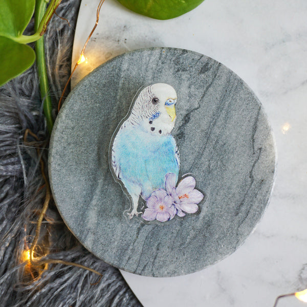 Limited Edition Budgie Pin Pal