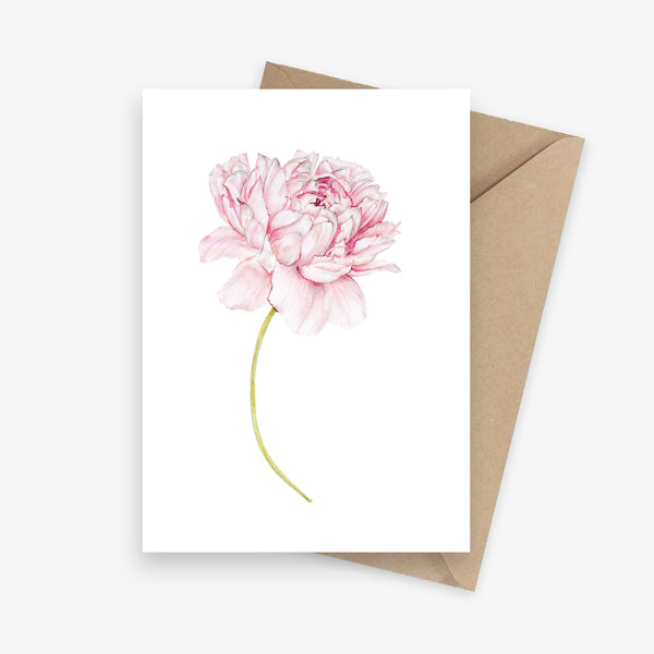Single illustrated greeting card featuring a pink peony flower.