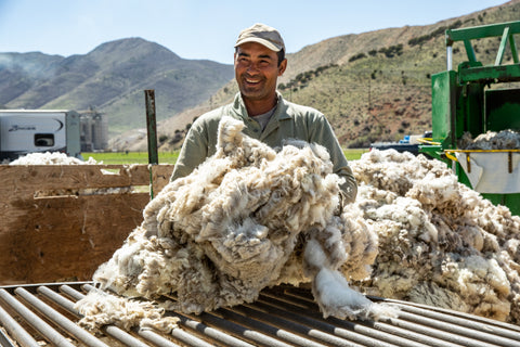 Wool from sheep sheared in the Mountain West. Image from GRIP6.