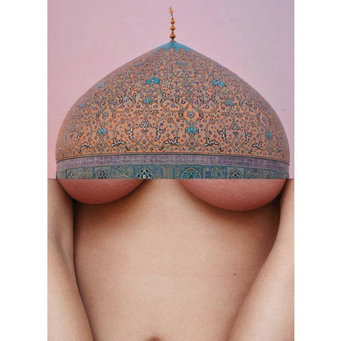 Naro Pinosa Dome Breast Postcard
