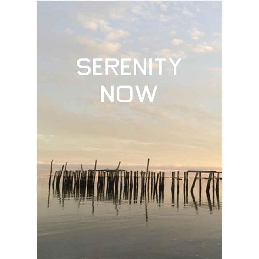 """Serenity Now"" Pilings Provincetown Postcard"