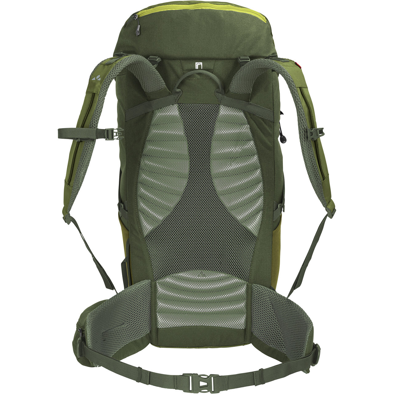 Vaude Prokyon 30-Liter Men's Mountaineering Backpack Holly Green Back