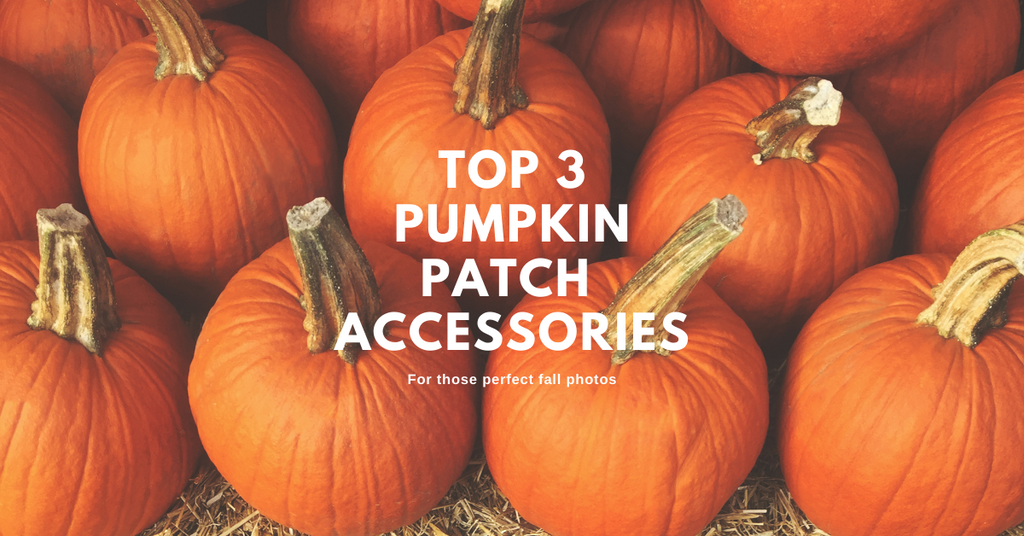 Picture Perfect Pumpkin Patch Accessories