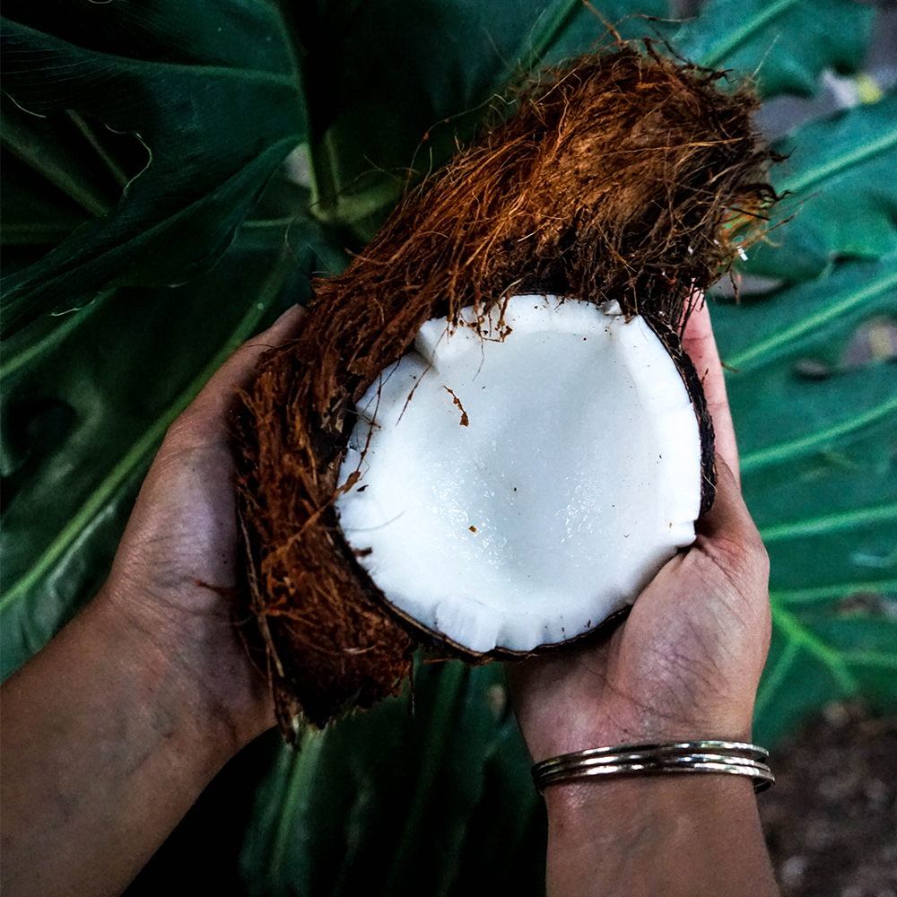 What you didn't know about the use of coconut oil