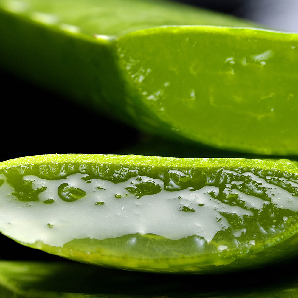 How to use Aloe Vera Gel to remove dark circles