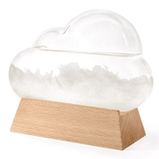 Cloud Storm Glass Weather Forecaster