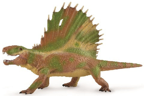 Dimetrodon with Movable Jaw