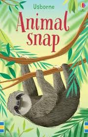 Animal Snap Cards Sloth