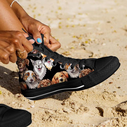 Dog Sneakers