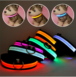 Dog Collar Flashing LED