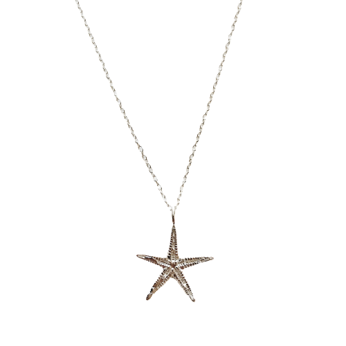 Shore starfish necklace