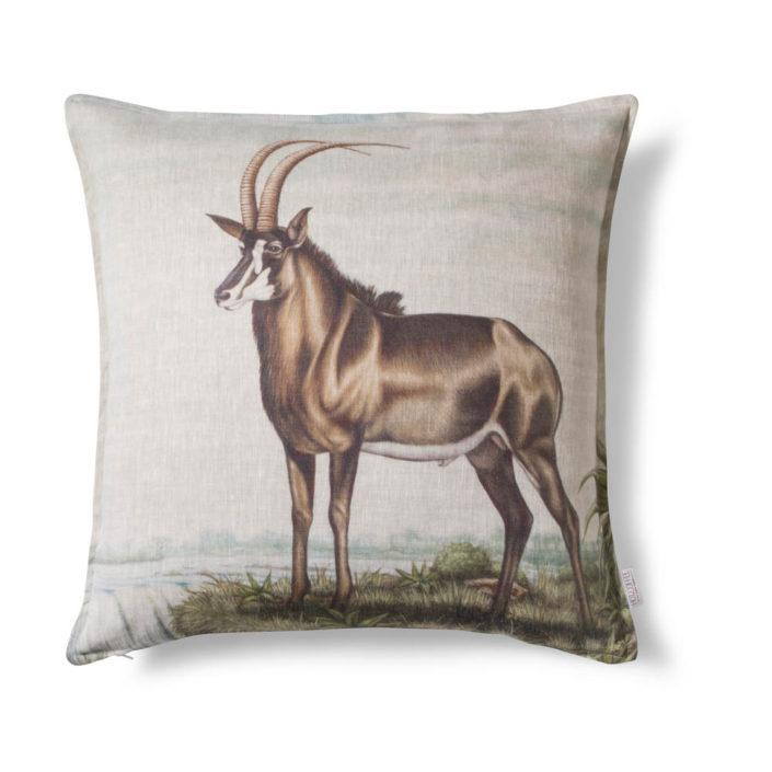 Harem sable antelope cushion cover