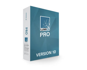 Lumion 10 Professional Perpetual License