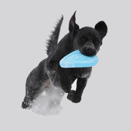 Zisc Dog Toy by Westpawdesign