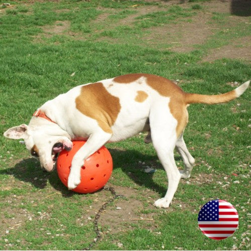 "The Big Daddy 10"" Unbreakoball Large Dog Toy - Bright Orange"