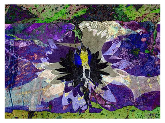 Lotus on Paper Abstract Nature Fine Art Print GMV PRINTWORK