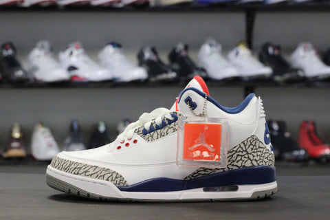 Air Jordan 3 True Blue 2016