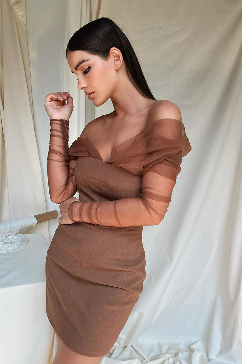 Brown Off The Shoulder Mesh Patchwork Mini Dress