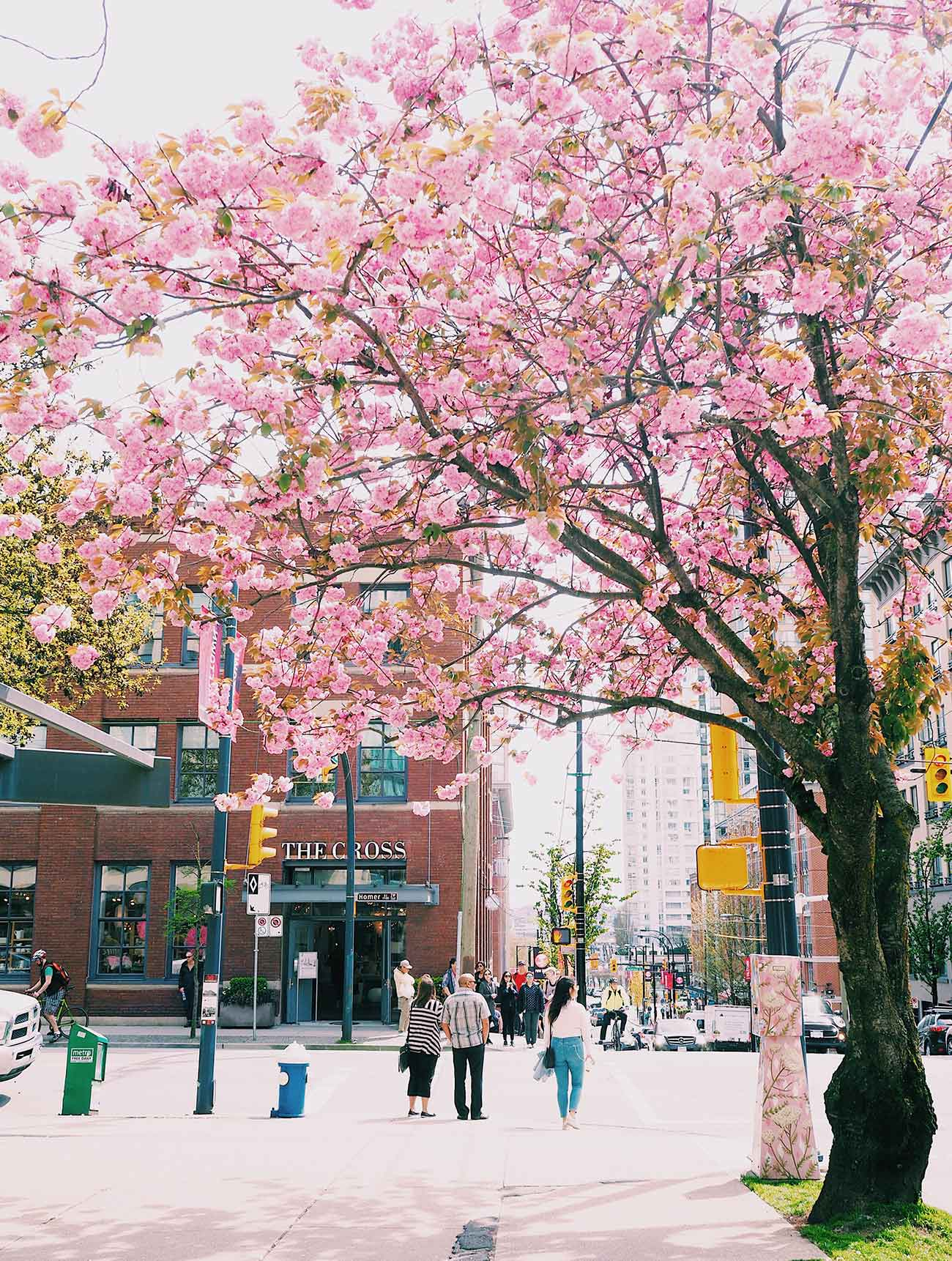 The Cross - Vancouver Travel Guide